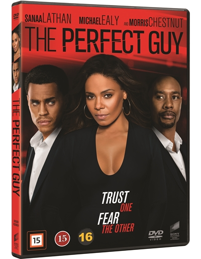 PERFECT GUY, THE [DVD]