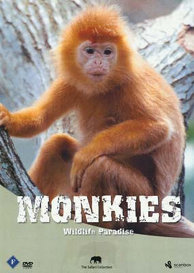 Monkies [DVD]